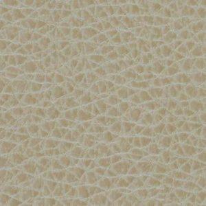 Desert Sand Upholstery